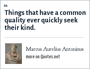 Marcus Aurelius Antoninus: Things that have a common quality ever quickly seek their kind.