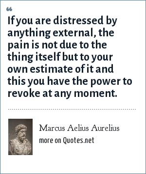 Marcus Aelius Aurelius: If you are distressed by anything external, the pain is not due to the thing itself but to your own estimate of it and this you have the power to revoke at any moment.
