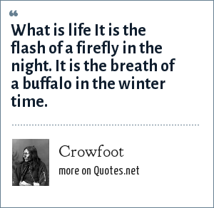 Crowfoot: What is life It is the flash of a firefly in the night. It is the breath of a buffalo in the winter time.