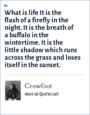 Crowfoot: What is life It is the flash of a firefly in the night. It is the breath of a buffalo in the wintertime. It is the little shadow which runs across the grass and loses itself in the sunset.