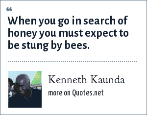 Kenneth Kaunda: When you go in search of honey you must expect to be stung by bees.