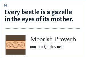 Moorish Proverb: Every beetle is a gazelle in the eyes of its mother.
