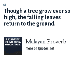 Malayan Proverb: Though a tree grow ever so high, the falling leaves return to the ground.