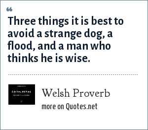Welsh Proverb: Three things it is best to avoid a strange dog, a flood, and a man who thinks he is wise.