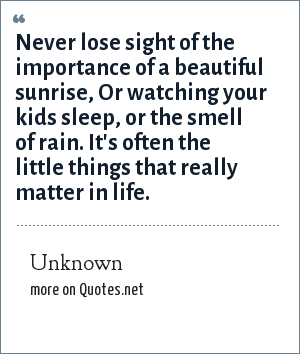 Unknown: Never lose sight of the importance of a beautiful sunrise, Or watching your kids sleep, or the smell of rain. It's often the little things that really matter in life.