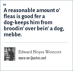 Edward Noyes Westcott: A reasonable amount o' fleas is good fer a dog-keeps him from broodin' over bein' a dog, mebbe.