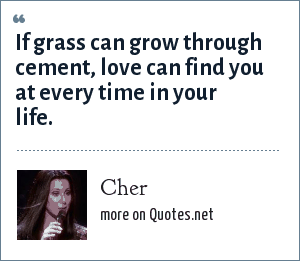 Cher: If grass can grow through cement, love can find you at every time in your life.