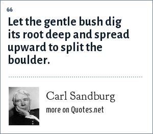 Carl Sandburg: Let the gentle bush dig its root deep and spread upward to split the boulder.