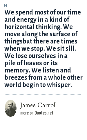 James Carroll: We spend most of our time and energy in a kind of horizontal thinking. We move along the surface of thingsbut there are times when we stop. We sit sill. We lose ourselves in a pile of leaves or its memory. We listen and breezes from a whole other world begin to whisper.