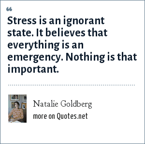 Natalie Goldberg: Stress is an ignorant state. It believes that everything is an emergency. Nothing is that important.