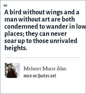 Mehmet Murat ildan: A bird without wings and a man without art are both condemned to wander in low places; they can never soar up to those unrivaled heights.