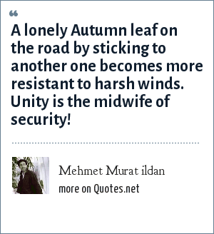 Mehmet Murat ildan: A lonely Autumn leaf on the road by sticking to another one becomes more resistant to harsh winds. Unity is the midwife of security!