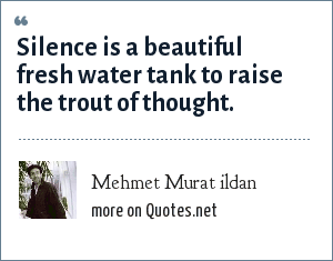 Mehmet Murat ildan: Silence is a beautiful fresh water tank to raise the trout of thought.