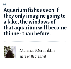 Mehmet Murat ildan: Aquarium fishes even if they only imagine going to a lake, the windows of that aquarium will become thinner than before.