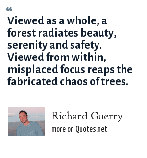 Richard Guerry: Viewed as a whole, a forest radiates beauty, serenity and safety. Viewed from within, misplaced focus reaps the fabricated chaos of trees.