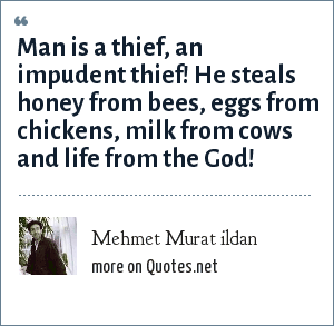 Mehmet Murat ildan: Man is a thief, an impudent thief! He steals honey from bees, eggs from chickens, milk from cows and life from the God!