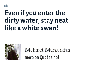 Mehmet Murat ildan: Even if you enter the dirty water, stay neat like a white swan!