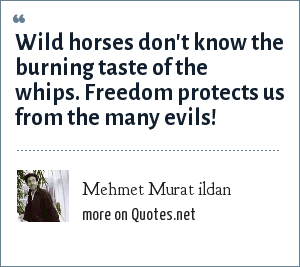 Mehmet Murat ildan: Wild horses don't know the burning taste of the whips. Freedom protects us from the many evils!