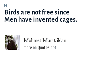 Mehmet Murat ildan: Birds are not free since Men have invented cages.