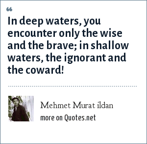 Mehmet Murat ildan: In deep waters, you encounter only the wise and the brave; in shallow waters, the ignorant and the coward!