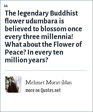 Mehmet Murat ildan: The legendary Buddhist flower udumbara is believed to blossom once every three millennia! What about the Flower of Peace? In every ten million years?