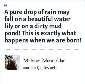 Mehmet Murat ildan: A pure drop of rain may fall on a beautiful water lily or on a dirty mud pond! This is exactly what happens when we are born!