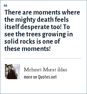 Mehmet Murat ildan: There are moments where the mighty death feels itself desperate too! To see the trees growing in solid rocks is one of these moments!