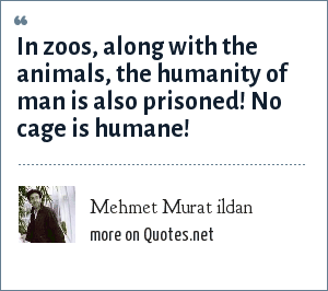 Mehmet Murat ildan: In zoos, along with the animals, the humanity of man is also prisoned! No cage is humane!