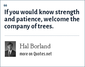 Hal Borland: If you would know strength and patience, welcome the company of trees.