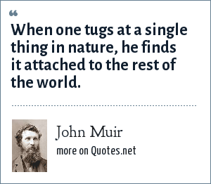 John Muir: When one tugs at a single thing in nature, he finds it attached to the rest of the world.