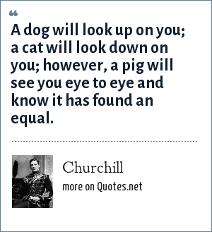 Churchill: A dog will look up on you; a cat will look down on you; however, a pig will see you eye to eye and know it has found an equal.
