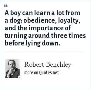 Robert Benchley: A boy can learn a lot from a dog: obedience, loyalty, and the importance of turning around three times before lying down.
