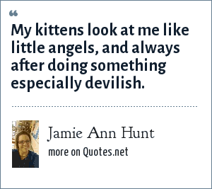 Jamie Ann Hunt: My kittens look at me like little angels, and always after doing something especially devilish.