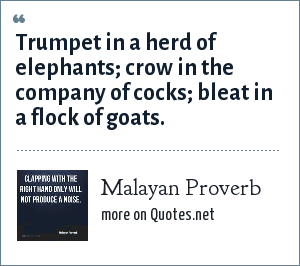 Malayan Proverb: Trumpet in a herd of elephants; crow in the company of cocks; bleat in a flock of goats.