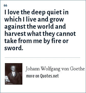 Johann Wolfgang von Goethe: I love the deep quiet in which I live and grow against the world and harvest what they cannot take from me by fire or sword.