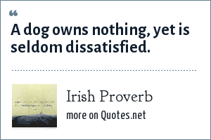 Irish Proverb: A dog owns nothing, yet is seldom dissatisfied.