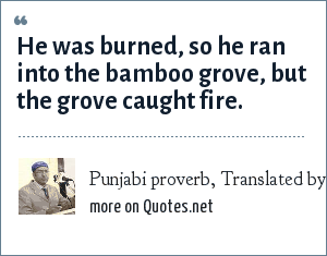 Punjabi proverb, Translated by Gurinder Singh Mann: He was burned, so he ran into the bamboo grove, but the grove caught fire.