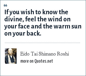 Eido Tai Shimano Roshi: If you wish to know the divine, feel the wind on your face and the warm sun on your back.