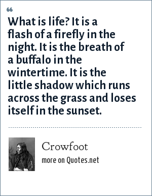 Crowfoot: What is life? It is a flash of a firefly in the night. It is the breath of a buffalo in the wintertime. It is the little shadow which runs across the grass and loses itself in the sunset.