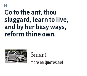 Smart: Go to the ant, thou sluggard, learn to live, and by her busy ways, reform thine own.