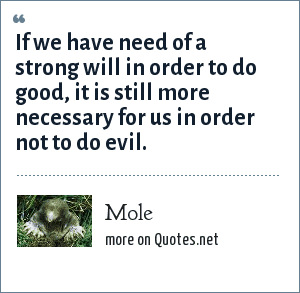 Mole: If we have need of a strong will in order to do good, it is still more necessary for us in order not to do evil.