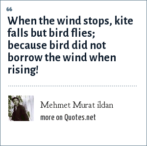 Mehmet Murat ildan: When the wind stops, kite falls but bird flies; because bird did not borrow the wind when rising!