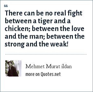 Mehmet Murat ildan: There can be no real fight between a tiger and a chicken; between the love and the man; between the strong and the weak!