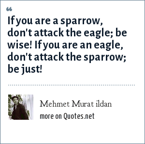 Mehmet Murat ildan: If you are a sparrow, don't attack the eagle; be wise! If you are an eagle, don't attack the sparrow; be just!