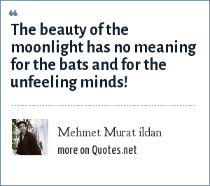 Mehmet Murat ildan: The beauty of the moonlight has no meaning for the bats and for the unfeeling minds!