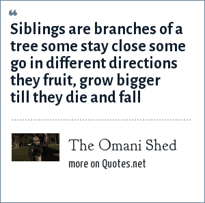 The Omani Shed: Siblings are branches of a tree some stay close some go in different directions they fruit, grow bigger till they die and fall