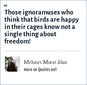 Mehmet Murat ildan: Those ignoramuses who think that birds are happy in their cages know not a single thing about freedom!