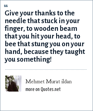 Mehmet Murat ildan: Give your thanks to the needle that stuck in your finger, to wooden beam that you hit your head, to bee that stung you on your hand, because they taught you something!