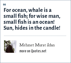 Mehmet Murat ildan: For ocean, whale is a small fish; for wise man, small fish is an ocean! Sun, hides in the candle!
