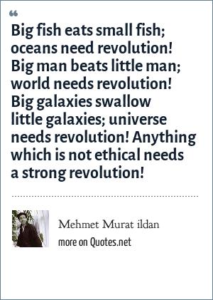 Mehmet Murat ildan: Big fish eats small fish; oceans need revolution! Big man beats little man; world needs revolution! Big galaxies swallow little galaxies; universe needs revolution! Anything which is not ethical needs a strong revolution!